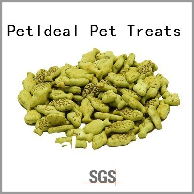 provide premium pet treats shop online for kittens